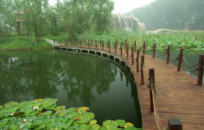 中秋节微山湖旅游注意事项,微山湖红荷湿地旅游注意事项