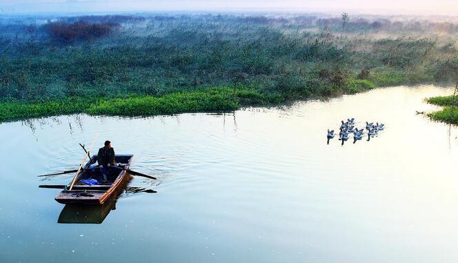 十一微山湖旅游注意事项, 国庆节微山湖红荷湿地旅游注意事项