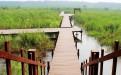 端午节微山湖跟团旅游攻略,微山湖红荷湿地跟团攻略