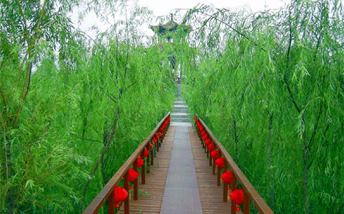 微山湖湿地公园攻略,微山湖湿地公园乾隆问诊处