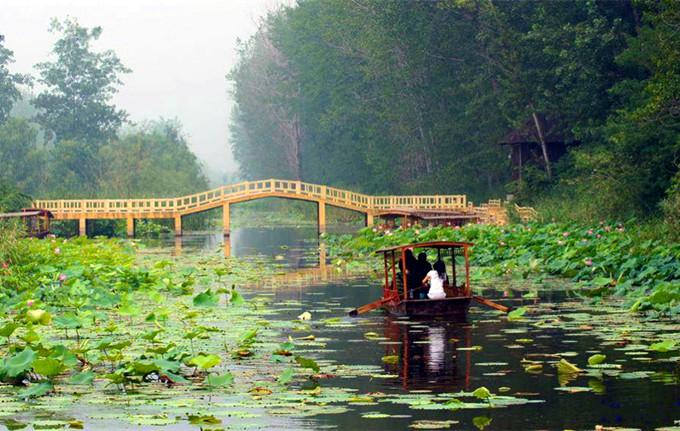 微山湖红河湿地攻略,微山湖红河湿地游船