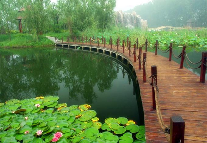 微山湖红荷湿地-微山湖红荷湿地风景区之百荷诗廊