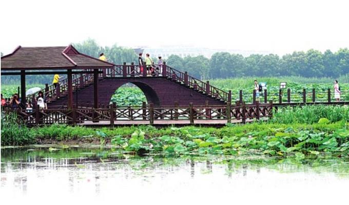 微山湖红荷湿地景点攻略-微山湖红荷湿地著名景点