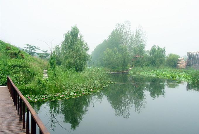 微山湖红荷湿地一日游价格,微山湖一日游攻略