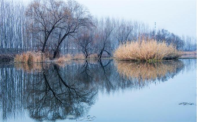 微山湖红荷湿地旅游景点简介