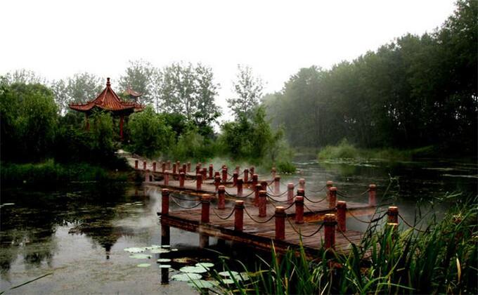 枣庄高铁站到微山湖湿地怎么坐车