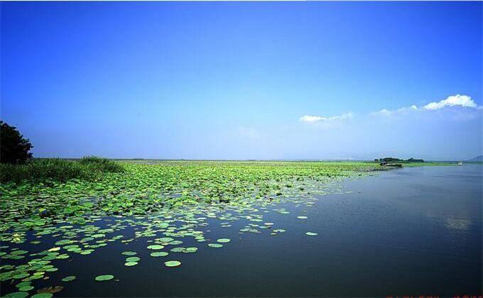 枣庄微山湖红荷湿地二日游团购