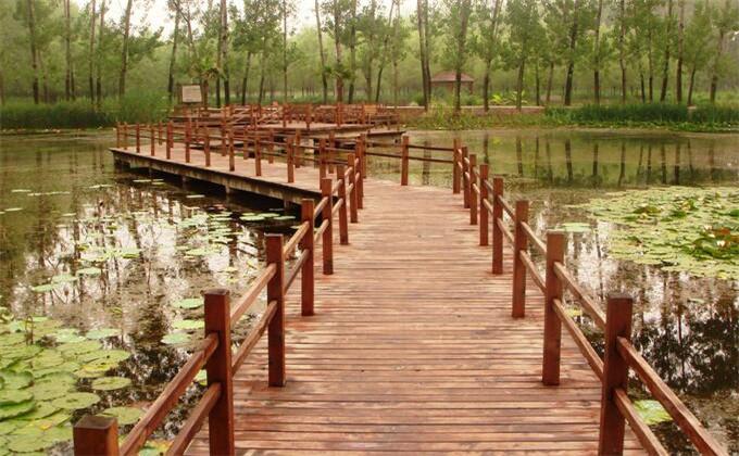 微山湖湿地是哪里
