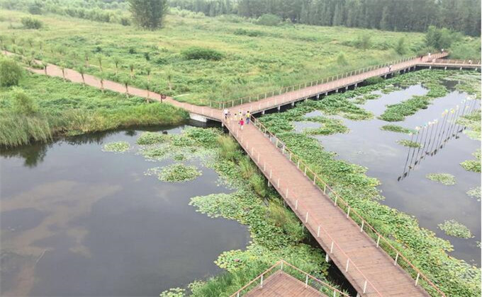 微山湖湿地离高铁站多远