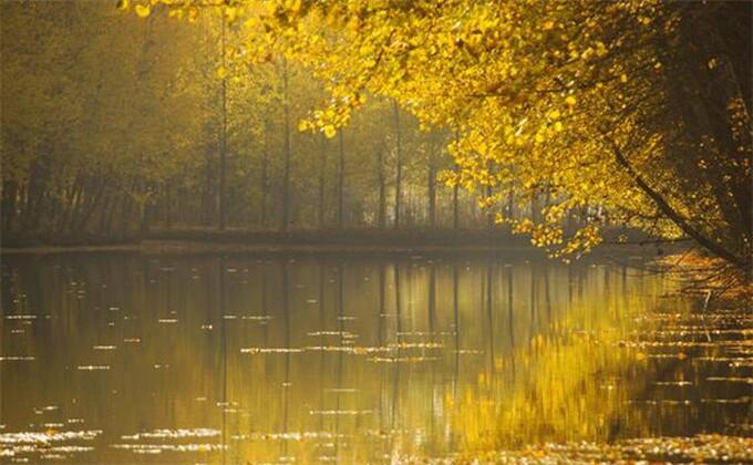 微山湖红荷湿地冬天好玩么