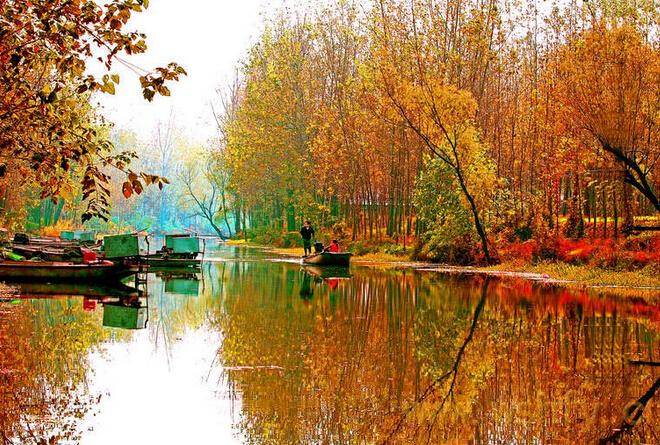 微山湖红荷湿地门票多少钱-微山湖景色
