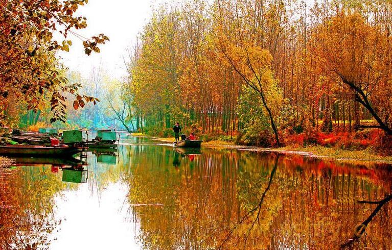 滕州微山湖湿地公园秋冬季门票便宜吗?