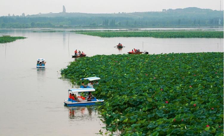 枣庄微山湖红荷湿地公园门票学生票: