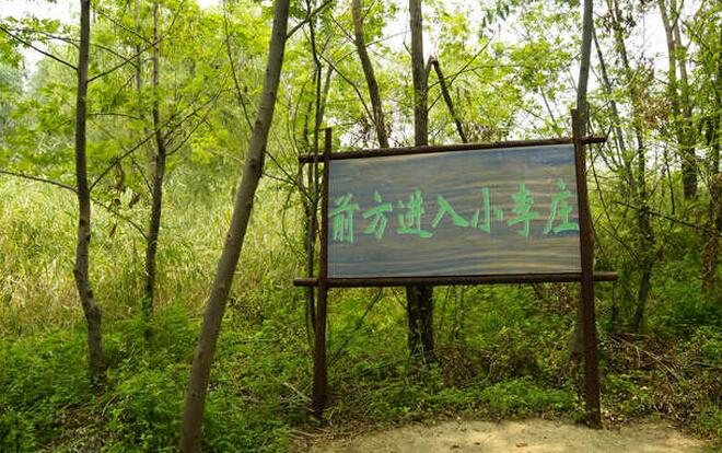 滕州微山湖湿地公园能玩多长时间
