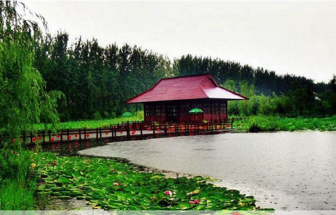 2019滕州微山湖红河湿地旅游优惠门票怎么买?