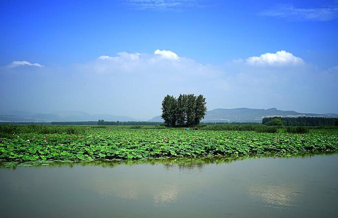 上海游微山湖旅游门票攻略
