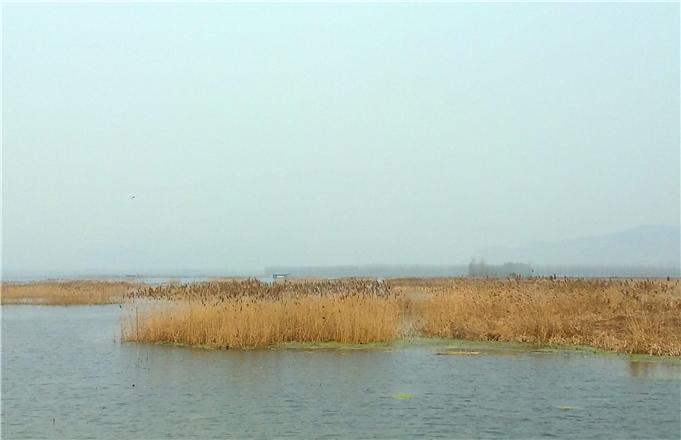 枣庄微山湖旅游景点,枣庄微山湖旅游景点大全