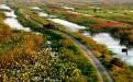 求微山湖红荷湿地景区附近便宜的酒店?