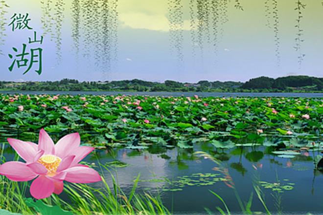 微山岛和微山湖红荷湿地是一个地方吗,哪个好玩?