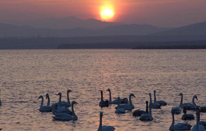 微山湖古镇在哪-微山湖景色