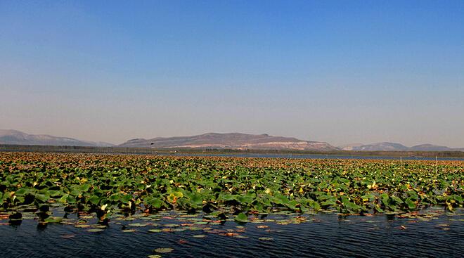 南京到微山湖自由行攻略,南京到微山湖红荷湿地自由行-微山湖景色
