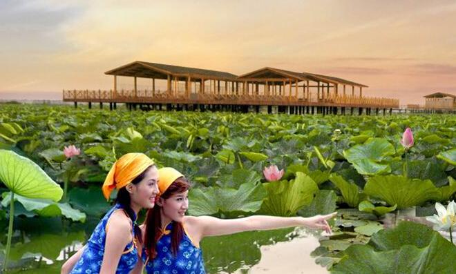微山湖红荷湿地跟团游攻略