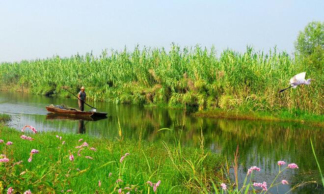 微山湖自由行线路推荐-微山湖旅游景色