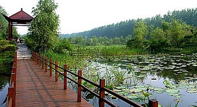 微山湖红荷湿地自由行一日游攻略