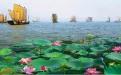 青岛到微山湖自由行攻略,青岛到微山湖红荷湿地自由行
