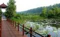 微山湖红荷湿地自由行门票价格及团购