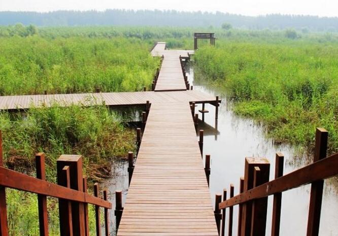 微山湖自驾游门票优惠政策,微山湖红荷湿地自驾门票优惠政策