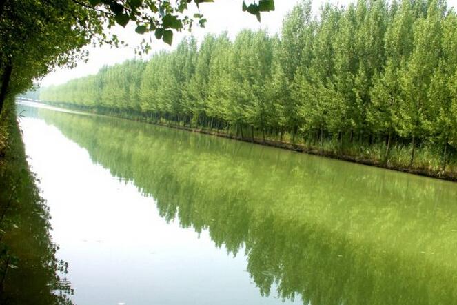 微山湖红荷湿地门票自驾游团购办法-河岸