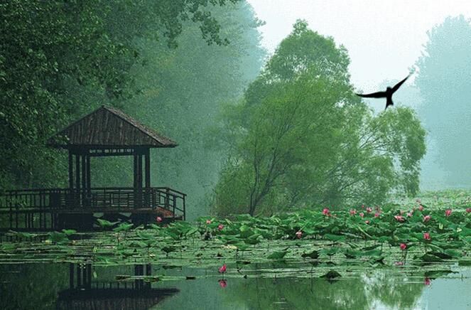 蚌埠到微山湖自驾游攻略,自助游攻略-湖水