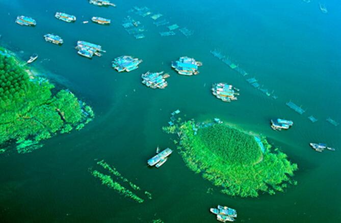 微山湖红荷湿地自驾一日游路线规划