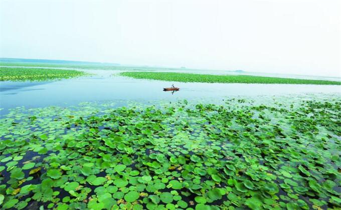 南京到微山湖景点有哪些