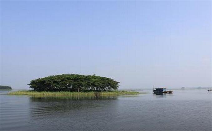 连云港到微山湖自驾游攻略住宿有哪些